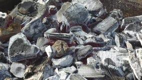 Steenkool heet op de grill in een dichte mening stock videobeelden