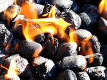 Steenkool op brand Stock Foto