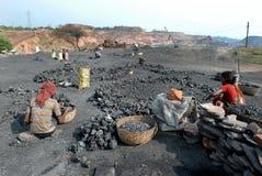 Steenkool Piker stock foto's