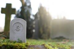 steenmonument/grafsteen met bitcoinsymbool op cementery - economisch/financieel concept royalty-vrije stock afbeelding