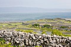 Steenmuren in Inisheer, Aran Islands, Ierland Stock Foto
