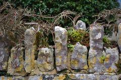 Steenmuur in Brits Platteland stock afbeelding
