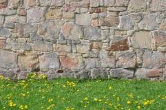 Steenmuur en groen gras Stock Foto's