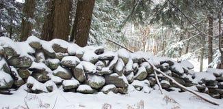 Steenmuur in Forest Covered in Sneeuw Royalty-vrije Stock Afbeeldingen
