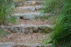 Steenstappen in het midden van het park Royalty-vrije Stock Foto