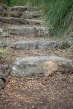 Steenstappen in het midden van het park Stock Afbeelding