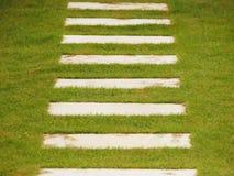 Steenstappen op groen gras Stock Foto