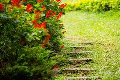 Steenstappen in Tuin Royalty-vrije Stock Afbeeldingen
