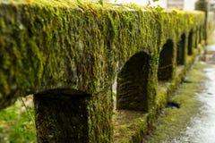 Steenverschansing met mos na regen wordt behandeld die stock foto