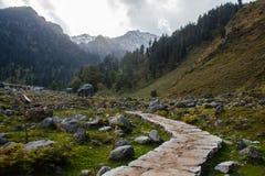Steenvoetpad in vallei in Himalayagebergte stock afbeelding
