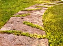 Steenweg in groen gras in een tuin royalty-vrije stock foto's