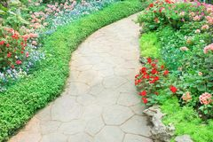 Steenwegen in aardtuin met kleurrijke sierbloemenachtergrond stock afbeeldingen