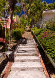 Steep 99 steps in St Thomas Royalty Free Stock Images
