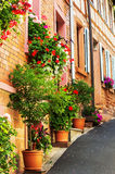 A steep alley adorned with geraniums Stock Image
