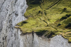 Steep cliff Royalty Free Stock Image