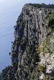 Steep Cliff Capri Royalty Free Stock Photo