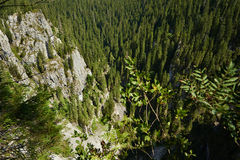 Steep cliff Stock Photography