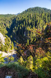 Steep cliff in romanian mountains Stock Photo