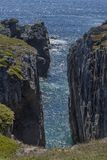 Steep cliffs near Bonavista, Newfoundland Stock Photography