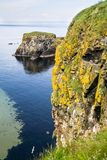 Steep cliffs and a small island off the north Antrim coast, Northern Ireland royalty free stock photos