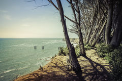 Steep cliffs with trees Royalty Free Stock Photo