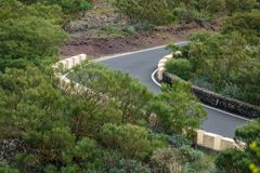 Steep curved mountain road in the middle of the bush stock image