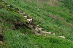 Steep dangerous steps on hillside. Royalty Free Stock Photos