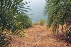 Steep Drop to the Sea. View from a cliff side trail in Goa, India Stock Image
