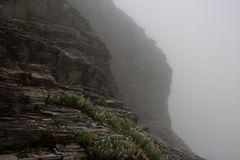 Steep Foggy Cliff Sides Stock Photography