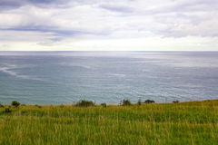 Steep grassy shore of the sea Stock Photography