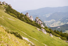 Steep mountain meadow with small rocks on Velky Rozsutec hill in Mala Fatra mountains in Slovakia. During summer day with clear sky stock photos