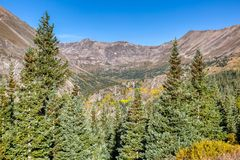 Steep mountain peaks and green pine trees near the summit of Hoosier Pass. royalty free stock photos