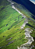 Steep mountain trail up Royalty Free Stock Image