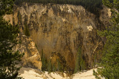 Steep ravine of Grand Canyon of the Yellowstone, Wyoming. Royalty Free Stock Photos