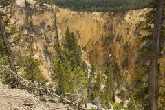 Steep ravine of Grand Canyon of the Yellowstone, Wyoming. Stock Images