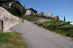 Steep road in Alps Royalty Free Stock Photo