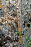 Steep rock with valuable minerals Stock Image