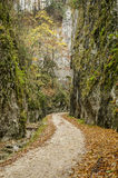 Steep rock walls in Zarnestiului Gorge. A spectacular canyon leading to The Curmătura Cabin, Zarnesti, Romania Stock Photo
