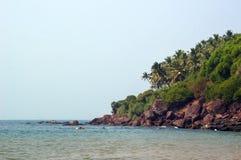 Steep rocky beach with palm trees. Royalty Free Stock Photos