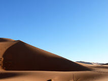 Steep Sand Dune in Moroccan Sahara Royalty Free Stock Image