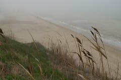 Steep seascape of the Black Sea Royalty Free Stock Photos