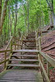 Steep stairs at the cliffs of moen, denmark. Steep stairs in the forest at the cliffs of moen, denmark Stock Photo