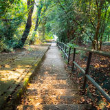 Steep stairs pathway Royalty Free Stock Image