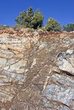 Steep stone face on mountain in Spain with tree on top Royalty Free Stock Photography