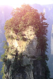 Steep stone mountain at zhangjiajie Royalty Free Stock Image