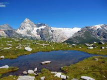 Mountain Tarn on Abbot Ridge and Illecillewaet Glacier, Glacier National Park, British Columbia. The steep and strenuous hike up Abbott Ridge provides sweeping Royalty Free Stock Image