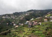 Steep terrasserade fält nära Funchal i Madiera fotografering för bildbyråer