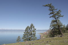 The steep wooded shore of the lake Hovsgol. Relict larch on the slope of a coastal hill in the background of the bowl of the lake and the far shore on the Royalty Free Stock Image
