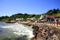 Steephill Cove, Isle of Wight. A view of Steephill Cove at High tide on the Isle of Wight, England, UK Stock Photography