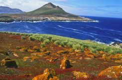steeple Falkland Islands jason Стоковая Фотография